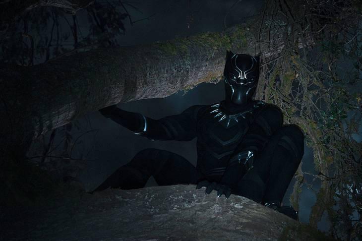 10582965_web1_180214-sea-black-panther-teaser-P2